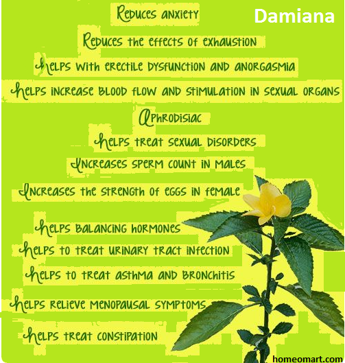 Damiana - Homeopathic Herb qualities