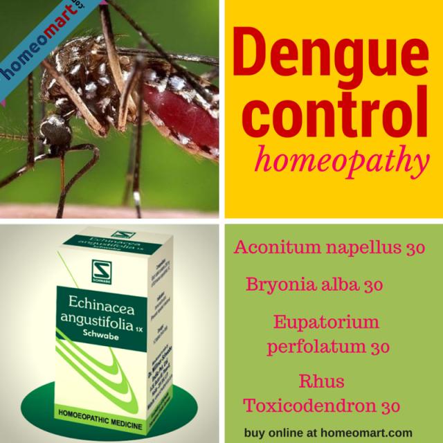 Homeopathic medicines for Dengue prevention and treatment. Eupatorium Perfoliatum